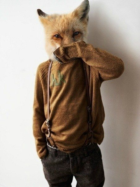 fox dude