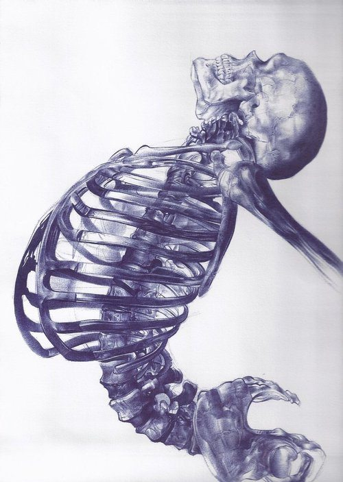 Ballpoint pen drawing by Andrea Schillaci.