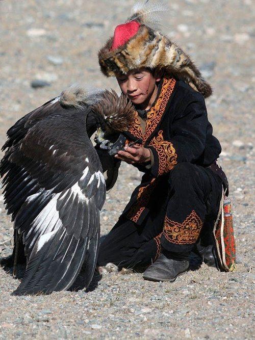 Mongolia Falconry Kazakhs